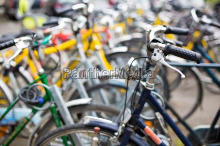 cykeludlejning mange cykler i en