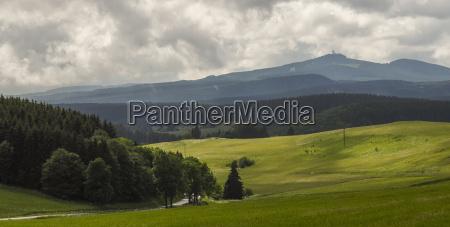 harpiks bjerg landskab natur lys solbeskinnet