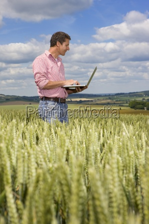farmer using laptop in young wheat