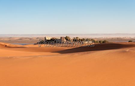 oasis i sahara orkenen marokko afrika