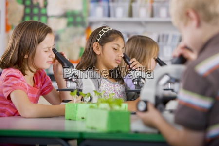 alvorlige studerende peering i mikroskoper inden