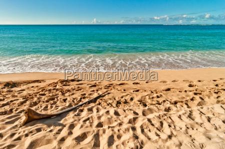 eksotiske haena strand i kauai o