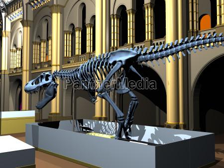 british natural history museum med dinosaur