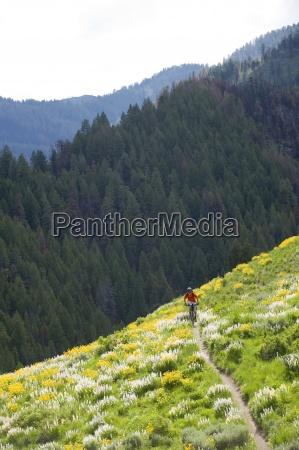 mand mountainbike i sun valley idaho
