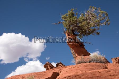 sten usa stenmasse stenlag klippe bjerg