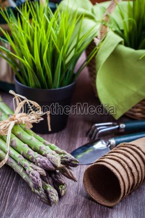 vaerktojer frugthost vinhost kurv kokken asparges