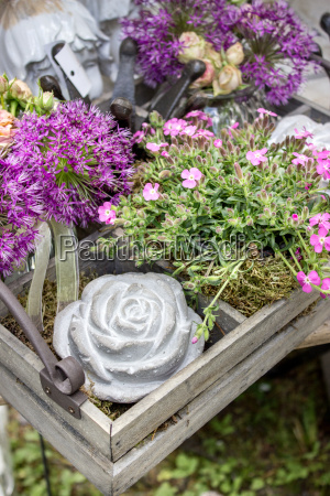 pink flowers with garden decoration