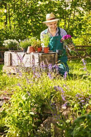 fnise smiler afslapning have blomst plante