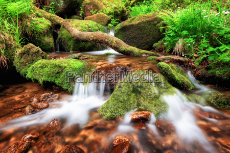 stream gently cascading down a mountain