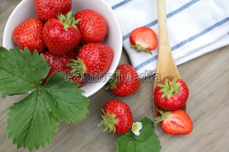 frugter frugt traefrugt plan udsigt traeske