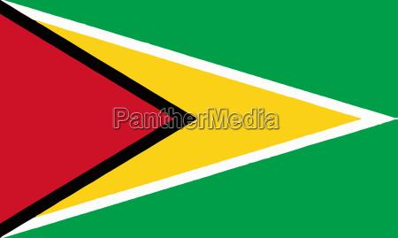 amerikansk amerika fane syd amerikaner flag