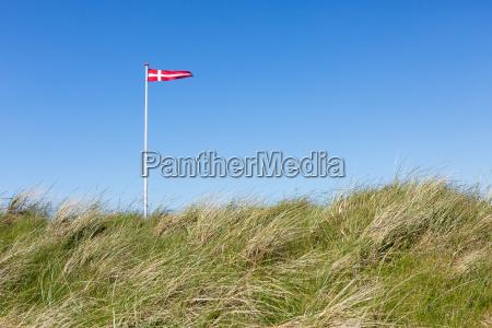 danmarks, flag, i, klitterne - 14614885