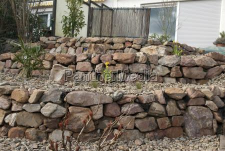 steingarten frisch bepflanzt pflanzen junge