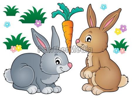 kanin, emne, billede, 1 - 16072889