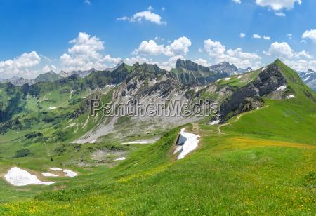 sommer sommerlig blomstereng bjerg landskab natur