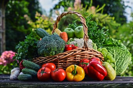 vidjekurv med assorterede ra okologiske grontsager