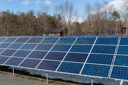 solar panel in forest