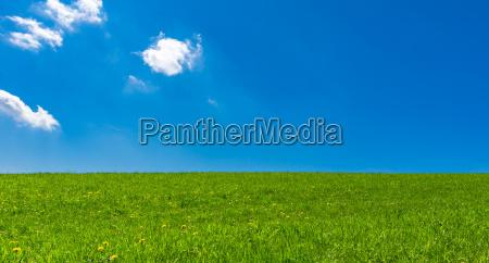 bla landbrug lys solbeskinnet sommer sommerlig