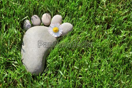 fodaftryk i graesset