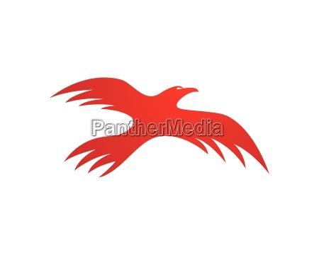 falcon logo skabelon
