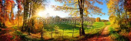fortryllende landskab i efteraret solrigt panorama