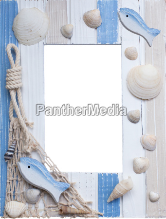 maritime ramme med skaller og fisk