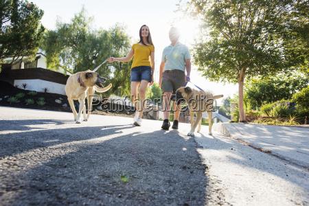 senior couple wearing shorts walking their