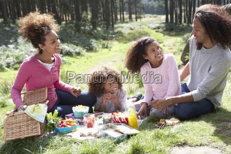 familie har picnic pa landet