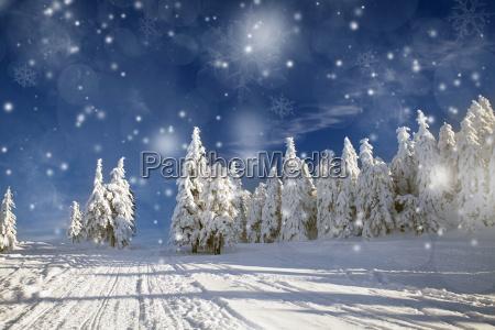 fantastisk vinterlandskab