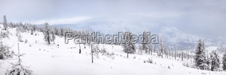 winter panorama with snow covered hill