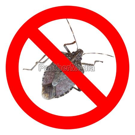 skilt signal nej bugs virkelige ikke
