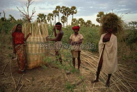 rathwa stammefolk og korn kurv panchmahal