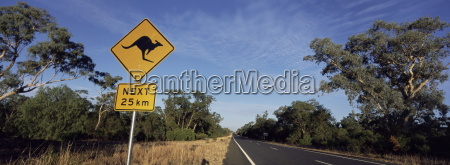 tur rejse farve dyr australien down