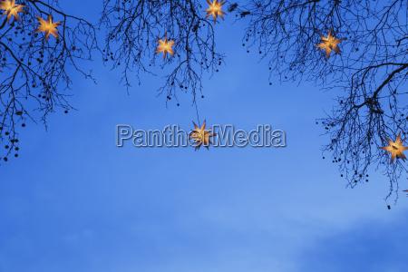 oplyste julestjerner haengende i grene