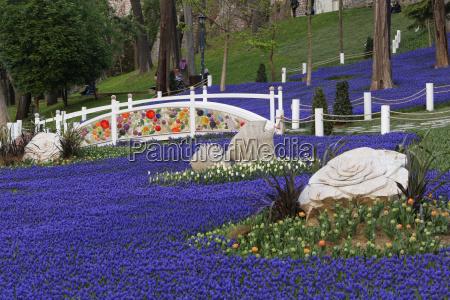 bla tur rejse park have blomst
