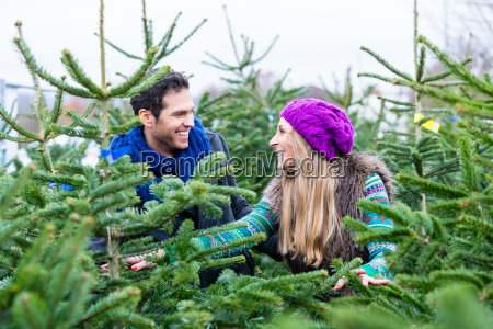 par soger at kobe juletraeer