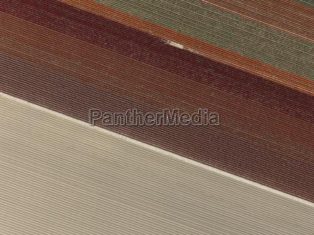 full frame shot of agricultural landscape