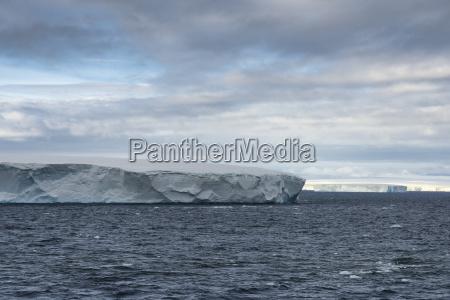 huge tabular icebergs floating in bransfield