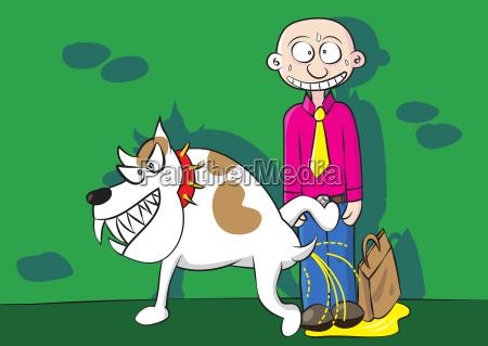 hund markering underlig sjov komisk lystig