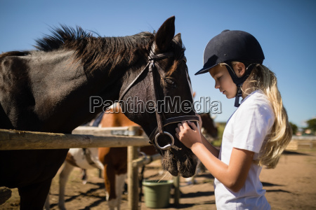 pige kaertegner den brune hest i