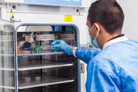 ung laboratorieforsker indforer en cellekulturflaske i