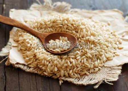 sundhed trae korn diaet mad maltid