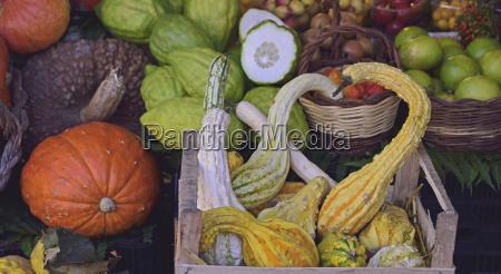 efterar grontsager pa farmers market