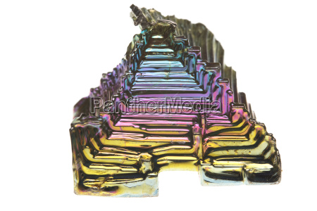 makrooptagelse naerbillede inde indendorsoptagelse fritlagt valgfri