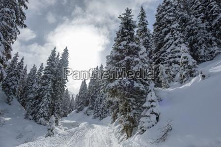 austria tyrol ziller valley hochfuegen winter