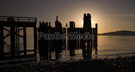 wooden post on shore against sky