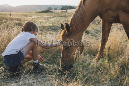 side view of girl touching horse