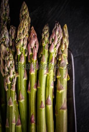 fresh harvested asparagus