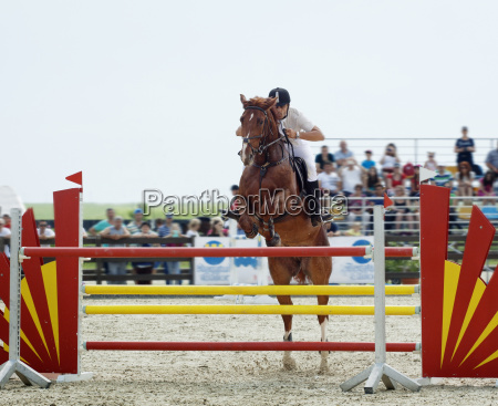 man riding horse over hurdle