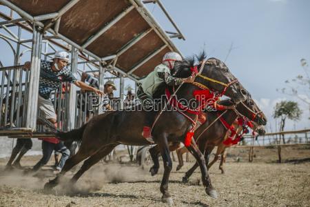 born jockeyer konkurrerer i traditionelle hestevaeddelob